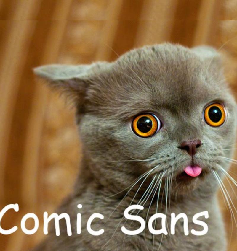 comic_Sans_cat3